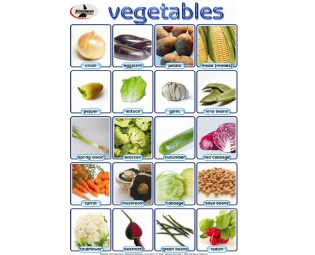 Vegetables Write and Wipe Educational Posters 1