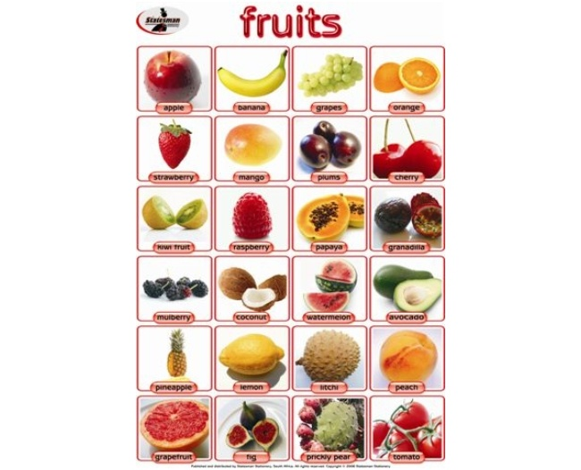 Fruits Write and Wipe Educational Poster 1