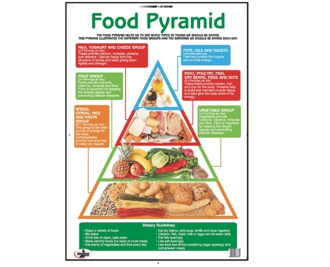 Food Pyramid Write and Wipe Educational Posters 1