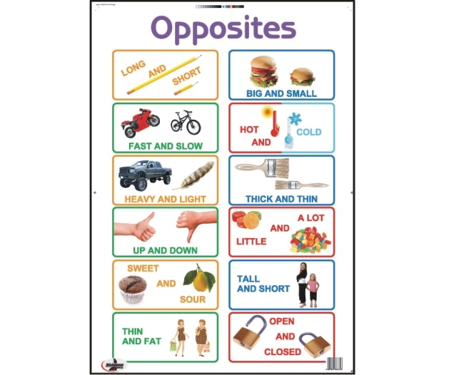Opposites Write and Wipe Educational Posters 1