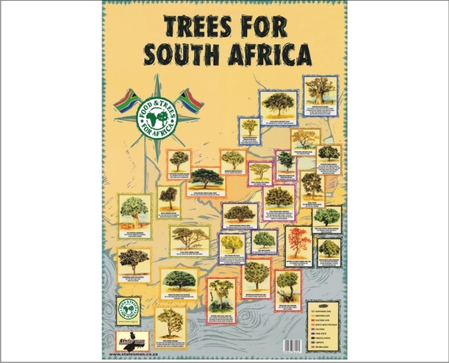 Trees of  South Africa Educational Posters 1