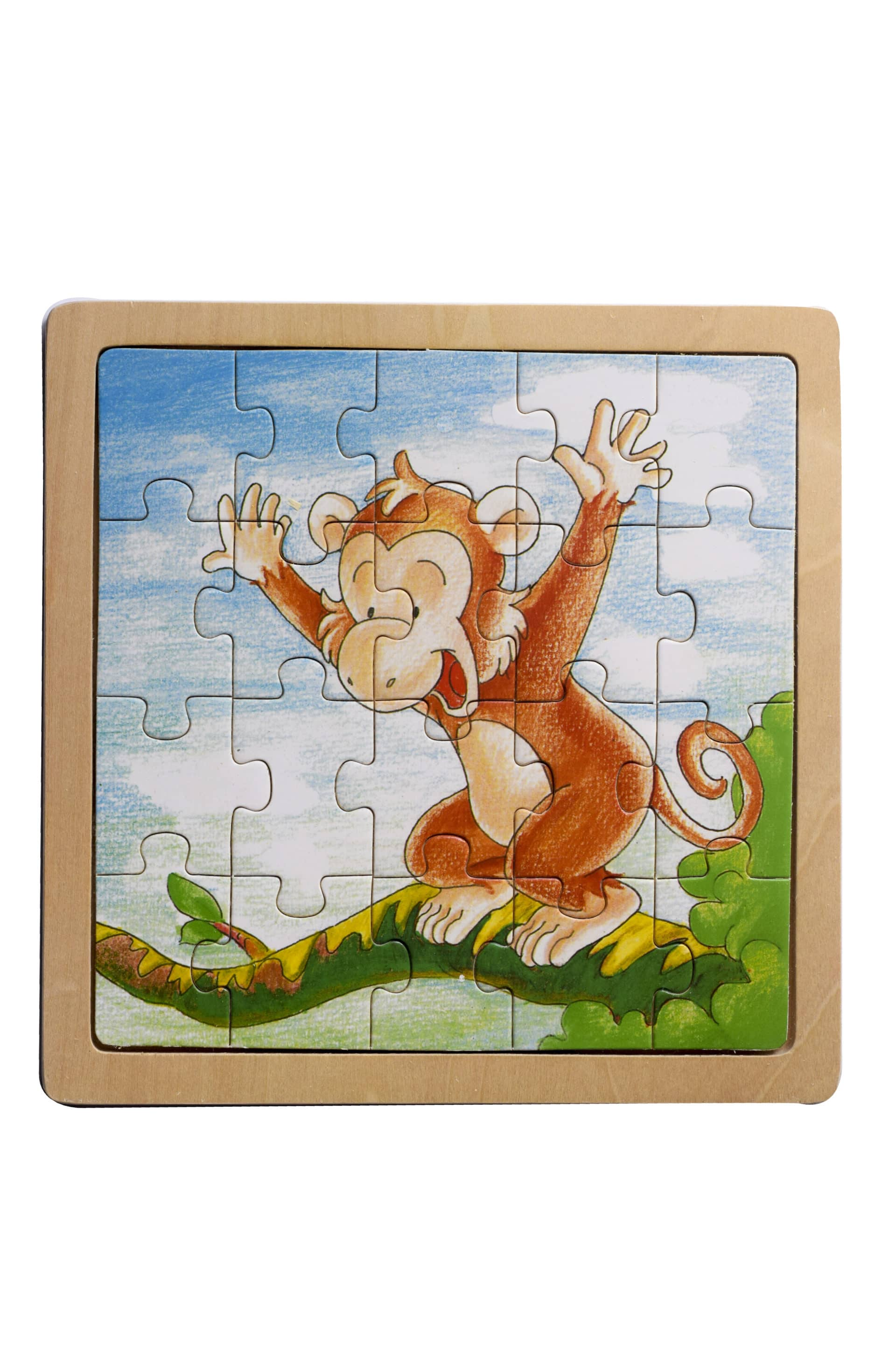 Puzzles Wooden 20pc 1